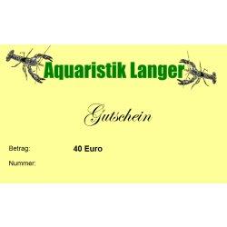 Geschenkgutschein 40 Euro für Aquaristik Teich Terraristik günstig kaufen Aquaristik-Langer