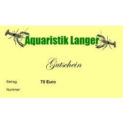 Geschenkgutschein 70 Euro für Aquarientiere Aquarientechnik Aquariendekoration günstig kaufen Aquaristik-Langer