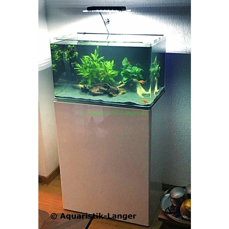 aquarienkombination aquarium mit schrank square 80 weiss kaufen 299 00. Black Bedroom Furniture Sets. Home Design Ideas