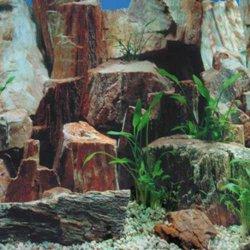 Fotorückwand Steine, 1/2, 50 cm hoch Meterware günstig kaufen Aquaristik-Langer