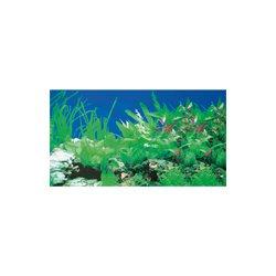 Fotorückwand Rückwandfolie Pflanzen 55 cm hoch, endlos,  günstig kaufen Aquaristik-Langer
