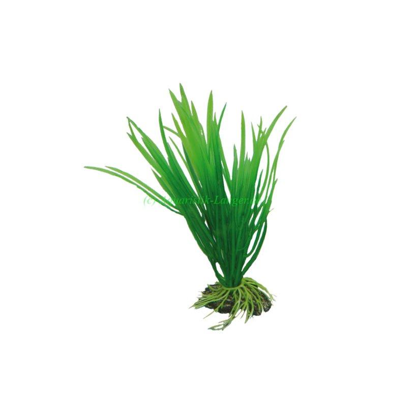 hobby cyperus 16 cm k nstliche pflanze f r aquarium g nstig kaufen 3 99. Black Bedroom Furniture Sets. Home Design Ideas