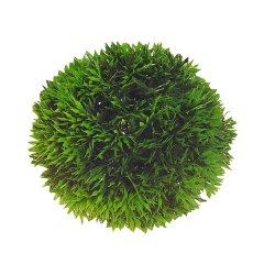Hobby Plant Ball Pflanzenball Pflanzenkugel Mooskugel...