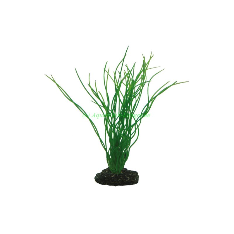 hobby sagittaria 20 cm k nstliche aquarium pflanze g nstig. Black Bedroom Furniture Sets. Home Design Ideas