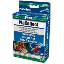 Planarienfalle JBL PlaCollect Planarienbekämpfung günstig...