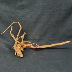 Fingerwurzel Mangrovenwurzel Größe L Unikat Einzelstück günstig kaufen Aquaristik-Langer