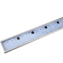 Blau Mini Lumina 40 Süßwasser LED Lampe