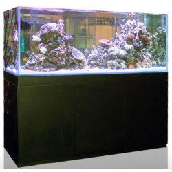 Blau Gran Cubic 92 Aquarium mit Unterschrank günstig kaufen Aquaristik-Langer