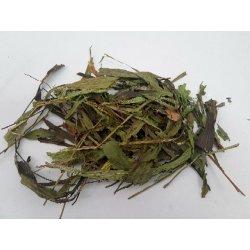 Spitzwegerich Blätter/ Kraut grün getrocknet 10 g günstig kaufen