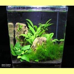 Aquarienkombination Cubic 91 Experience mit Unterschrank weiss