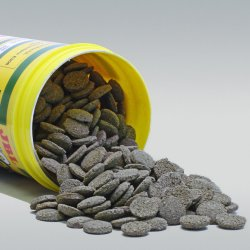 JBL NovoPleco für Saugwelse Welschips Welsfutter günstig kaufen