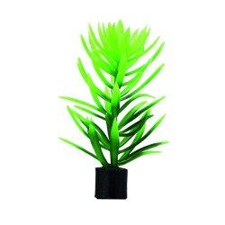 Hobby Didiplis mini künstliche Pflanze 1,5x1,5x6 cm