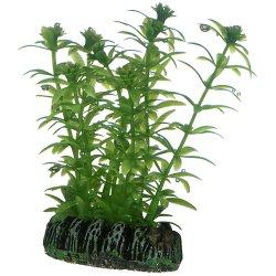 Hobby Lagarosiphon, künstliche Pflanze