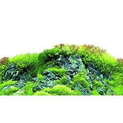 Fotorückwand Scapers Hill zweiseitig