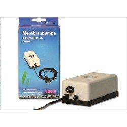 Membranpumpe Schego optimal 250 Aquarienpumpe Luftpumpe Kleinkompressor günstig kaufen Aquaristik-Langer
