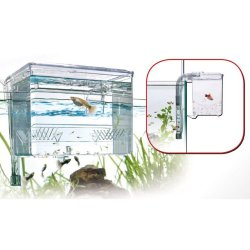 Ablaichkasten Breeding Box Satellite Large XL günstig kaufen Aquaristik-Langer