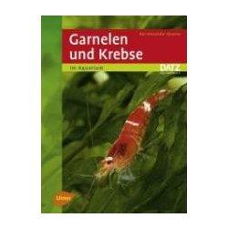 Garnelen & Krebse im Aquarium