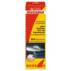 sera mycopur 50 ml gegen Verpilzungen günstig kaufen Aquaristik-Langer