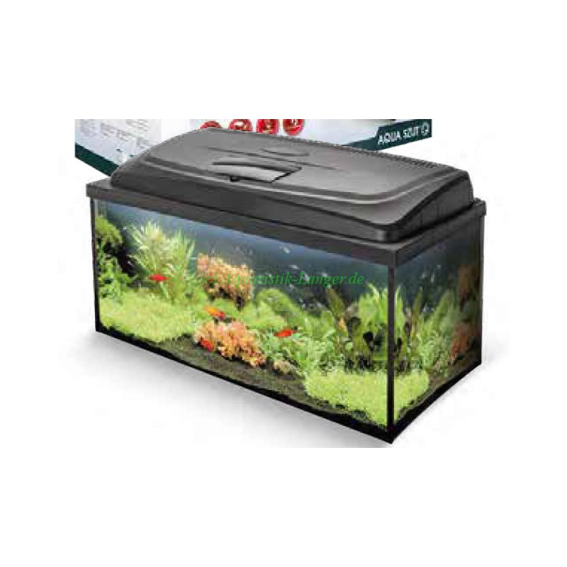 aquarium aqua 4 family 80x35x40 112 liter g nstig kaufen 122 95. Black Bedroom Furniture Sets. Home Design Ideas