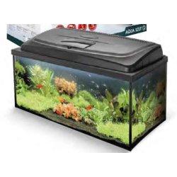 Aquarium Aqua 4 family, 80x35x40, 112 Liter günstig kaufen Aquaristik-Langer